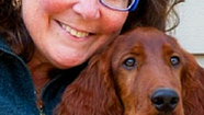 Debra Hamilton: Why Providing for Your Pets in Your Will Is NOT Enough, and What to Do About That